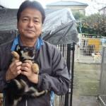 坂本和巳ブリーダーインタビュー|柴犬、豆柴、イタリアングレーハウンド|埼玉県